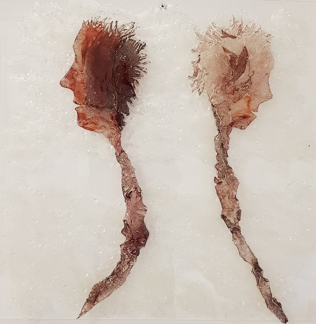 Indifferenza, gianni depaoli, mista su fibra, pelle e inchiostro di calamaro, resina, 70 x70 cm, anno 2019