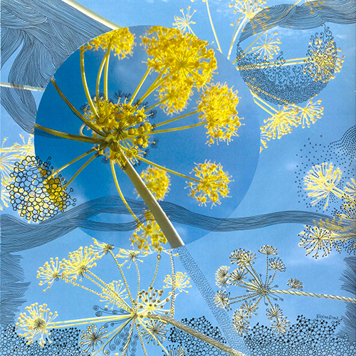 1519_bloom_me_0