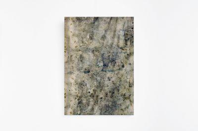 Sindone vegetale | à la recherche du bleu di Gaia Bellini, Stampa botanica su tela, 75x55 cm, 2017