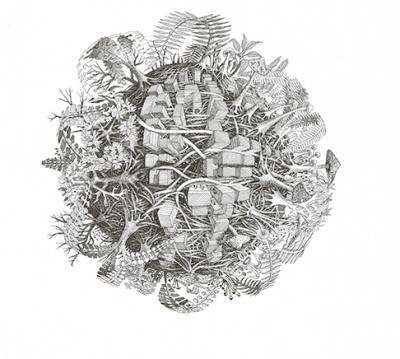 Transition, Jérèmy Magniez, Disegno a matita, 40x40 cm, 2019