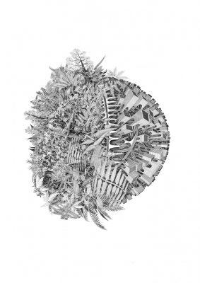 PLanète 4 Buridan, Jérémy Magniez, disegno su carta inchiostro di china, 70x50 cm, 2015
