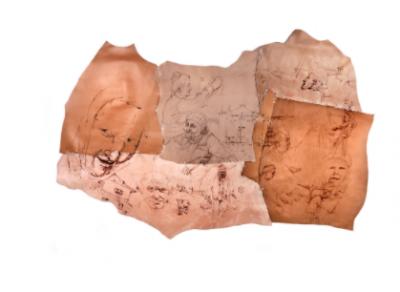 Vita di Paese di Cabri daniele, Pelle animale incisa a fuoco, 100x200 cm, 2017