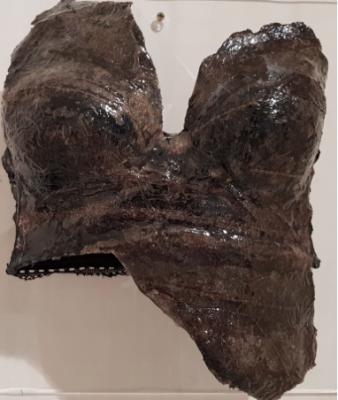 CORPETTO BLACK di Gianni Depaoli, tecnica mista, pelle di halibut Alaska, metacrilato, 35x35 cm, 2018