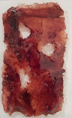 FACE di Gianni Depaoli, tecnica mista, pelle e inchiostro di seppia, metacrilato, 38x25 cm,2017