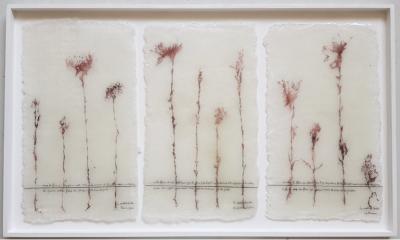 LA MORTE DI CECILIA di Gianni Depaoli, tecnica mista, pelle e inchiostro di Calamaro, metacrilato, 1350x800cm, 2019