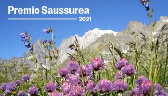 saussureanewsletter (1)