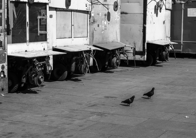Chiara Borgaro_La vie ici. Fotografia del silenzio_2020_20x30_Fotografia analogica_120