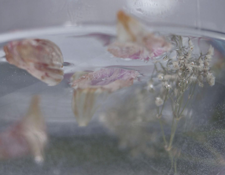 Jessica Basso_Tutto sommerso respira (II)_2020_3,5cm x 4,5 cm_Fotografia_25